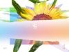 EXID, 숨은 명곡 'How Why' 21일 재발매